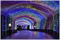 光のトンネル - うさまっこブログ