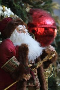 Happy Holidays #4 - miyabine's フォト日記2~身の周りのきれい・可愛い・面白い~
