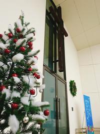 ♪教会もクリスマス仕様になりました - cocarde