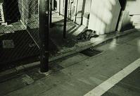 Kodak Tri-X400×ILFORD ID11(1+1)Leica mini3 - モノクロフィルム 現像とプリント 実例集
