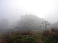 霧の中のセンター/今何月? - 千葉県いすみ環境と文化のさとセンター
