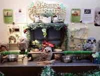 わたわたなクリスマス * Christmas in Chouette Cafe - ももさへづり*うた暦*Cent Chants d' une Chouette