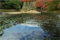 日本庭園 - muku3のフォトスケッチ