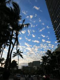2018年7月1日2日目・夜散歩 & お茶タイム - ハワイでも のんびりいこうやぁ