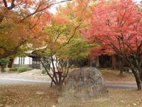 『粕森公園と橿森神社』 - 自然風の自然風だより