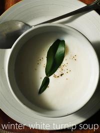 真っ白な蕪のスープ plus ロールキャベツ - serendipity blog