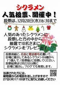 シクラメン人気投票!開催します - 手柄山温室植物園ブログ 『山の上から花だより』