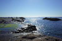 江の島からぶらぶら その4~江の島散策 - 「趣味はウォーキングでは無い」