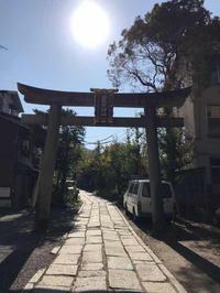 粟田神社詣で - 猫と、旅する猫用カメラ