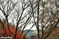 定番で抜く~大井川鐡道~ - 蒸気をおいかけて・・・少年のように