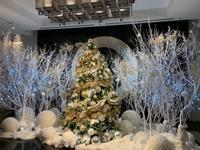x'mas - 赤坂・ニューオータニのヘアサロン大野ザメイン店ブログ