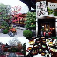 妙心寺退蔵院 - NATURALLY