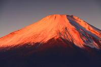 30年11月の富士(28)山中湖の富士 - 富士への散歩道 ~撮影記~
