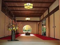 北鎌倉・明月院② - つれづれ日記