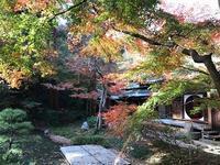 北鎌倉・明月院③本堂後庭園 - つれづれ日記