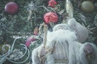 クリスマスシーズン。 - ~風紋~徒然歳時記
