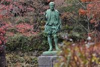 落葉の松平郷園地 - 鳥と共に日々是好日