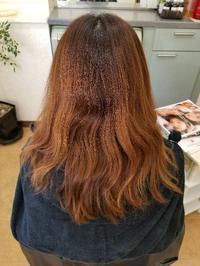 暗髪カラー - ヘアーサロンササキ(釜石市大町)のブログ
