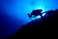 18.12.6久米島へ行ってました。 - 沖縄本島 島んちゅガイドの『ダイビング日誌』