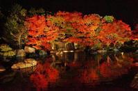 好古園の紅葉ライトアップ①お屋敷の庭 - たんぶーらんの戯言