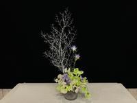 ホワイトクリスマス☆ - Flower Days ~yucco*のフラワーレッスン&プリザーブドフラワー~