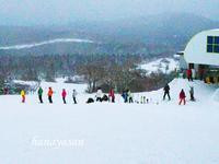 スキーシーズン始まる - こもれびの森