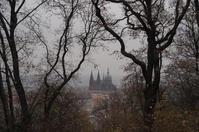 A moment in Prague #18 - S w a m p y D o g - my laidback life