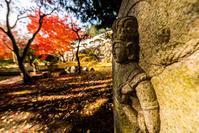 少し前の九品寺1 - toshi の ならはまほろば
