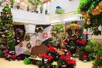豊平公園緑のセンター『クリスマス展』行ってきました。 - ワイン好きの料理おたく 雑記帳