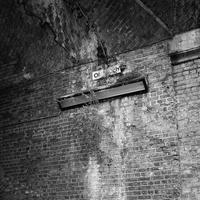 London Bricks, Buddleia, and an illegible sign - No Man's Land
