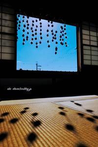 奈良旅⑧ - A  B  C