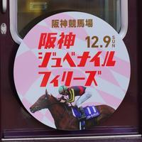 阪急ジュベナイルフィリーズHM2019 - 鉄男の部屋