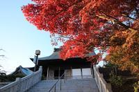法多山の紅葉・2♪ - happy-cafe*vol.2