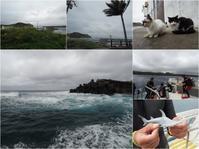 12月7日曇天、そして強風です - YDSブログ