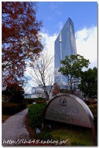 びわ湖大津プリンスホテルのイルミネーション - 「O.D.G.」 Powered by LH645