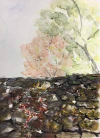 【水彩画】石がき - ジェンマとおっちゃんの日記2