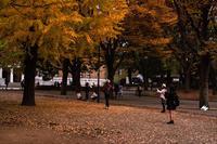 秋らしく、冬らしく - NINE'S EDITION