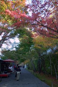 喧騒をすり抜けて大原降り注ぐ紅葉 - 京都ときどき沖縄ところにより気まぐれ