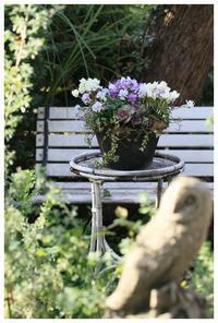 好きな花で寄せ植えを・・ - natu     * 素敵なナチュラルガーデンから~*     福岡で庭造り、外構工事(エクステリア)をしてます