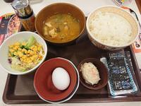 12/8  カレーとん汁たまかけ朝食¥380 + サラダ¥140 @すき家 - 無駄遣いな日々