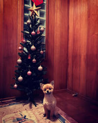 soramama☆クリスマスツリー-2018 - SORANKO
