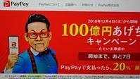 PayPay20%還元、500円プレゼントキャンペーンで買いました。 -   心満たされる生活