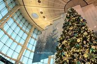 ☆彡Airport Christmas 空に会いにいく・・ - 陽だまりベンチ+me