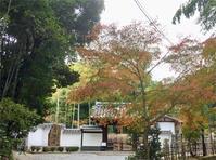 京都紅葉ツアー第3日(最終日) - 木造三階建の詩