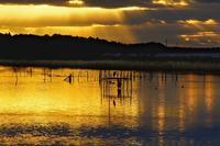 朝の西印旛沼2018-12-26更新 - 夕陽に魅せられて・・・