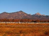 本格的な冬の訪れ - 八ヶ岳 革 ときどき くるみ