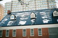 薄雪の日々 - 照片画廊