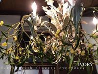 初雪が……………。 -  Flower and cafe 花空間 ivory (アイボリー)