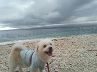 曇空が多い最近 - LILOANでお局三昧!