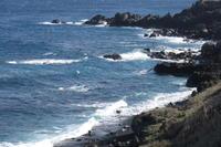 荒れた海 - 三宅島風景